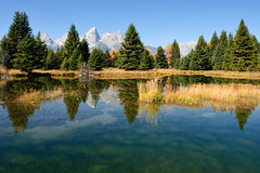 Schwabacher's Landing (bhophotos) Tags: travel blue autumn trees usa mountains reflection green fall nature water yellow river landscape geotagged golden nikon colorful day clear wyoming teton tetons jacksonhole grandtetonnationalpark gtnp schwabacherslanding d700 2470mmf28g jacksonholevalley projectweather bruceoakley