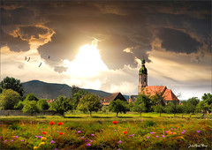 The six poppies. (Jean-Michel Priaux) Tags: flowers sunset france church nature photoshop landscape nikon village alsace d90 valff priaux mygearandme ringexcellence flickrstruereflection1 rememberthatmomentlevel1