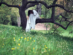 the last living day (dlemieux) Tags: trees sunset portrait woman color green girl beautiful grass dedication sadness focus mood moody sad dress pov shapes dlemieux dianalemieux arboretum sorrow grief arnoldarboretum whitedress