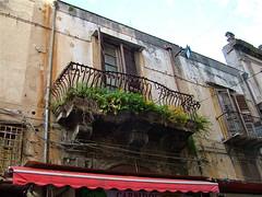 felci sul balcone (costagar51) Tags: italy italia arte sicily palermo piante architettura sicilia anticando regionalgeographicsicilia rgsarte rgsstreetphotography