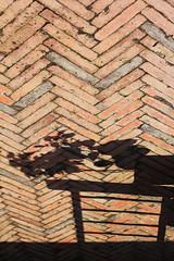 upward (redbeanicy) Tags: china light shadow plant texture up leaves contrast canon pattern shanghai bricks arrow ladder dslr zigzag crosshatch tianzifang