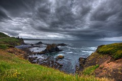 Yaquina Head, Newport, Oregon (Thad Roan - Bridgepix) Tags: ocean sky lighthouse beach nature water grass rain clouds oregon landscape rocks pacific head newport wildflowers hdr facebook d800 yaquina 201205