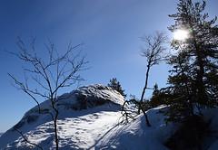 Koli - Finland (Sami Niemeläinen (instagram: santtujns)) Tags: park winter snow suomi finland landscape march sunny national lumi talvi maisema puisto kansallispuisto maaliskuu koli karjala lieksa pielinen aurinkoinen pohjois