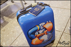 I'm coming home (Orphen 5) Tags: disney passport suitcase donaldduck   tumblr donaldducksuitcase disneysuitcase