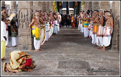 6130 - Sri Parthasarathy Temple Bramotsavam April 2016 series (chandrasekaran a 32 lakhs views Thanks to all) Tags: travel india heritage car festival temple vishnu culture traditions lord krishna chennai tamil nadu tamils parthasarathy triplicane brahmotsavam alwars vaishnavites