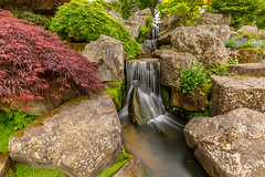 Wisley waterfall - Explored 23/05/16 (KT Photography - Thanks for the 1 Million Views.) Tags: uk england water garden waterfall kent unitedkingdom surrey kelvin gb wisley rhs trundle surreylife ktphotography