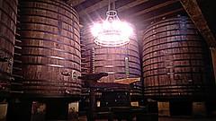Lopez de Heredia Via Tondonia (Ferreria Vella) Tags: via bodega alta lopez rioja heredia haro tondonia