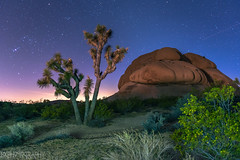 Prehistoric Land (Bryan_Xavier) Tags: california night rocks desert joshuatree joshuatreenationalpark