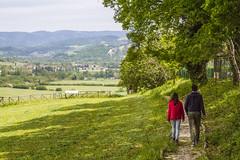 Vedute Rinascimentali - Marcheholiday experiences (Marcheholiday Le Marche Images) Tags: arte francesca da leonardo della vinci cultura piero balconi montefeltro