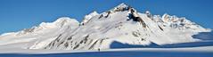 In search of Konkordia (Alpine Light & Structure) Tags: snow alps alpes schweiz switzerland suisse alpen skitour berneroberland berneseoberland konkordiaplatz
