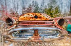 Bullfrog (lyta1138) Tags: ontario rust rockwood mcleansautowreckers