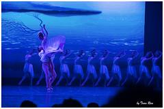 SHF_8435_Dance (Tuan Ru) Tags: blue blackandwhite bw black 50mm dance 100mm tuan 135mm 70200mm 2016 2470mm 14mm en ma 1dmarkiii entrng envtrng tuanrau