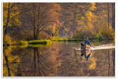 Man's Best Friend, White Rock Pond (Fundy Rocks) Tags: trees friends dog canada reflection water yellow gold spring pond novascotia calm canoe adventure foliage whiterock mansbestfriend canoeing brilliant canoeist annapolisvalley kingscounty doglover whiterockpond