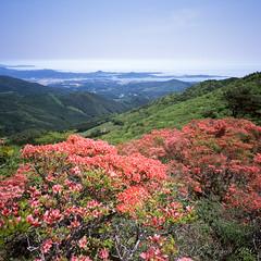 20160522-20 (GenJapan1986) Tags: 2016 fujifilmgf670wprofessional fujifilmprovia100f        miyagi film japan  landscape   pacificocean sea