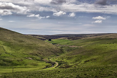 Winding Through Scottish Borders (Colin Myers Photography) Tags: road blue summer sky green colin clouds photography warm dramatic scottish tranquility calm hills lush dramaticsky tranquil borders myers heriot scottishborders theborders colinmyersphotography wwwcolinmyerscom
