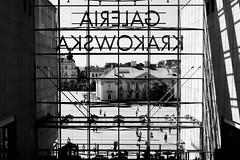 DSC_4384 (RafalGorski) Tags: ktakw galeria krakowska bw maopolska architektura witryna okno pawia poland window cracow shadow gallery shop sklep