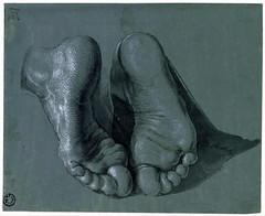Study of Two Feet for the Apostle Paul in the Heller Altarpiece (lluisribesmateu1969) Tags: rotterdam 16thcentury drer museumboijmansvanbeuningen