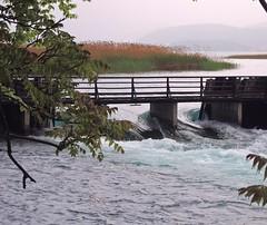 Macedonia (Struga) Drim River flows out of Lake Ohrid
