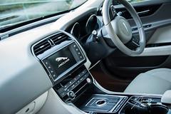 Jaguar XE (Ash Silva) Tags: car jaguar