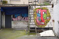 Singerie (HBA_JIJO) Tags: urban streetart france art monster wall painting graffiti monkey spray peinture mur monstre monstro bault hbajijo