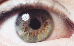 Hazel (Andrs Rueda) Tags: iris light brown macro green eye beautiful close hazel inside void pupil