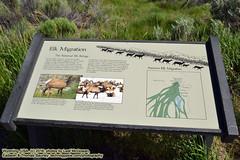061616-009 (leafworks) Tags: idaho roadtrips chroniclesofsirthomasleaf chronicles24 volcaniclegacy camping archaeology wyoming grandtetonnationalpark tetons hoodriver or usa 01