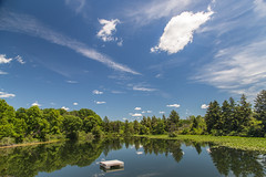 marl bed july 2016 view from high dive 1-1 (John Hudson Photo) Tags: lake clouds canon reflections landscape michigan bluesky scotts circularpolarizer 6d greengrass 24105 canon6d