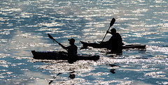 DSC_0094 (Wendy Oor) Tags: blue lake sports water nikon kayak sillouette d5500
