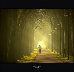running for life... (Zino2009 (bob van den berg)) Tags: life trees light sunlight man green grass sport yellow training licht bomen alone ray atmosphere sunny running walkoffame workout runner beams deventer sunray fietspad lampposts voetgangers sfeer sportive zonnestralen stralen sportief hardloper lantaarnpalen straal bicycletrack colmschate bobvandenberg photoshopcreativo zino2009