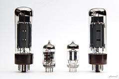 23/52  Tubes Rulzz!!  \m/ (biel.b.c.) Tags: music nikon vacuum tube sb600 amp valve instrument softbox amplificador d90 sb28 strobist