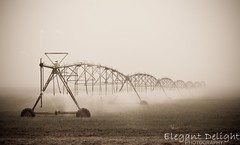 Foggy Pivot (Elegant Delight Photography) Tags: fog canon landscape colorado farm farmer pivot weldcounty