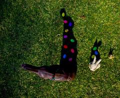 Shadows (maRina_lucia) Tags: shadow rabbit bunny green bunnies grass statue easter spring colorful warm shadows chocolate egg sunny eggs rabbits lapin eastereggs paintedeggs