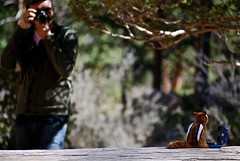 Behind the scenes of Chipimonki's pic (Vacacion) Tags: usa utah bryce brycecanyon karlo vacacion brycenationalpark miguelvaca tatiyi karlwilli temacoasttocoast