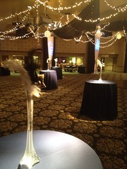 Elegant Theme Ceiling Treatment and Centerpieces (Celadon Events) Tags: lighting towers columns feathers vase elegant decor props circuscircus glassware twinklelights centerpieces rentals ricepaperlanterns ceilingtreatment
