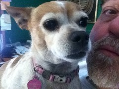 Pepita and me (Diogioscuro) Tags: selfportrait me self yo pepi eu io ich pepita diogioscuro