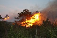 Vlieland - duinbrand noord van Bomenland (Dirk Bruin) Tags: vlieland wind natuur sbb rook brand bos brandweer noord vuur duin luchtmacht klu staatsbosbeheer noordoosten detachement broedvogels bomenland duinbrand natuurterrein vogelbroedgebied padvan15 beheerseenheid