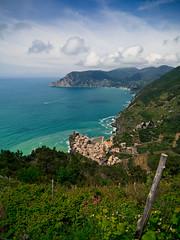 Vines to Venazza (jp3g) Tags: blue italy mountain vines wine hill grapes terre cinque venazza