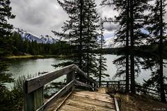 HFF from Johnson Lake ~ Banff (hey ~ it's me lea) Tags: sky lake canada water stairs fence landscape rockies stairway alberta banff rockymountains friday banffnationalpark hff johnsonlake fencefriday