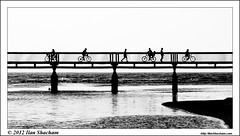 Bridging (Ilan Shacham) Tags: bridge sea people blackandwhite bw beach water port walking reading cycling israel telaviv mediterranean yarkon