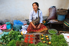 A market woman selling vegetables in Laos. (cookiesound) Tags: life people woman fruits work asia asien market vegetable goods frau laos markt selling vientiane gemse marketwoman womansellinggoods