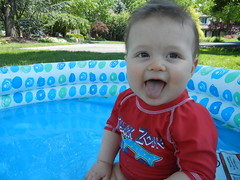 happy pool baby