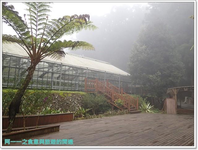 南投溪頭自然教育園區台大image127