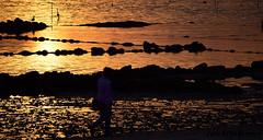 Vilagarcia de Arousa (Luis Diaz Devesa) Tags: ocean blue trees sea sky espaa sun tree beach nature water silhouette clouds landscape mar spain sand europa waves playa galicia galiza pontevedra viveros vilagarciadearousa villagarciadearosa luisdiazdevesa