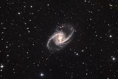 NGC 1365, Barred Spiral in Fornax (Daniele Malleo) Tags: astrophotography astronomy fli cdk astrometrydotnet:status=solved astrometrydotnet:id=nova274556