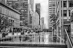 Rainy City (Alejandro Ortiz III) Tags: newyorkcity newyork alex brooklyn digital canon eos newjersey canoneos allrightsreserved lightroom rahway alexortiz 60d lightroom3 shbnggrth alejandroortiziii copyright2016 copyright2016alejandroortiziii