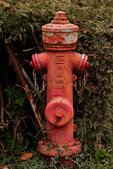 Hydrant (surfingstarfish) Tags: red detail rot water hydrant wasser feuerwehr infrastruktur verfall lschen wasserversorgung lschwasser ffentlicherraum