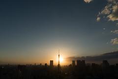ILCA-77M2 DSC03690.jpg (san-ue) Tags: tokyo tokyotower     ilca77m2 77ii