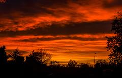 Sunrise and Skies (2 of 3) (erin.gulick) Tags: sunrise silhouette panorama stitchedpanorama horsham australia australianflag