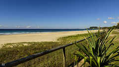 Beautiful one day, perfect the next! (BAN - photography) Tags: ocean sea plants beach sand waves path beachfront headland goldcoast d810