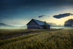 Do you still remember last summer? (Night photographs from Finland) Tags: summer sun misty fog barn canon finland mika klaukkala samyang suutari